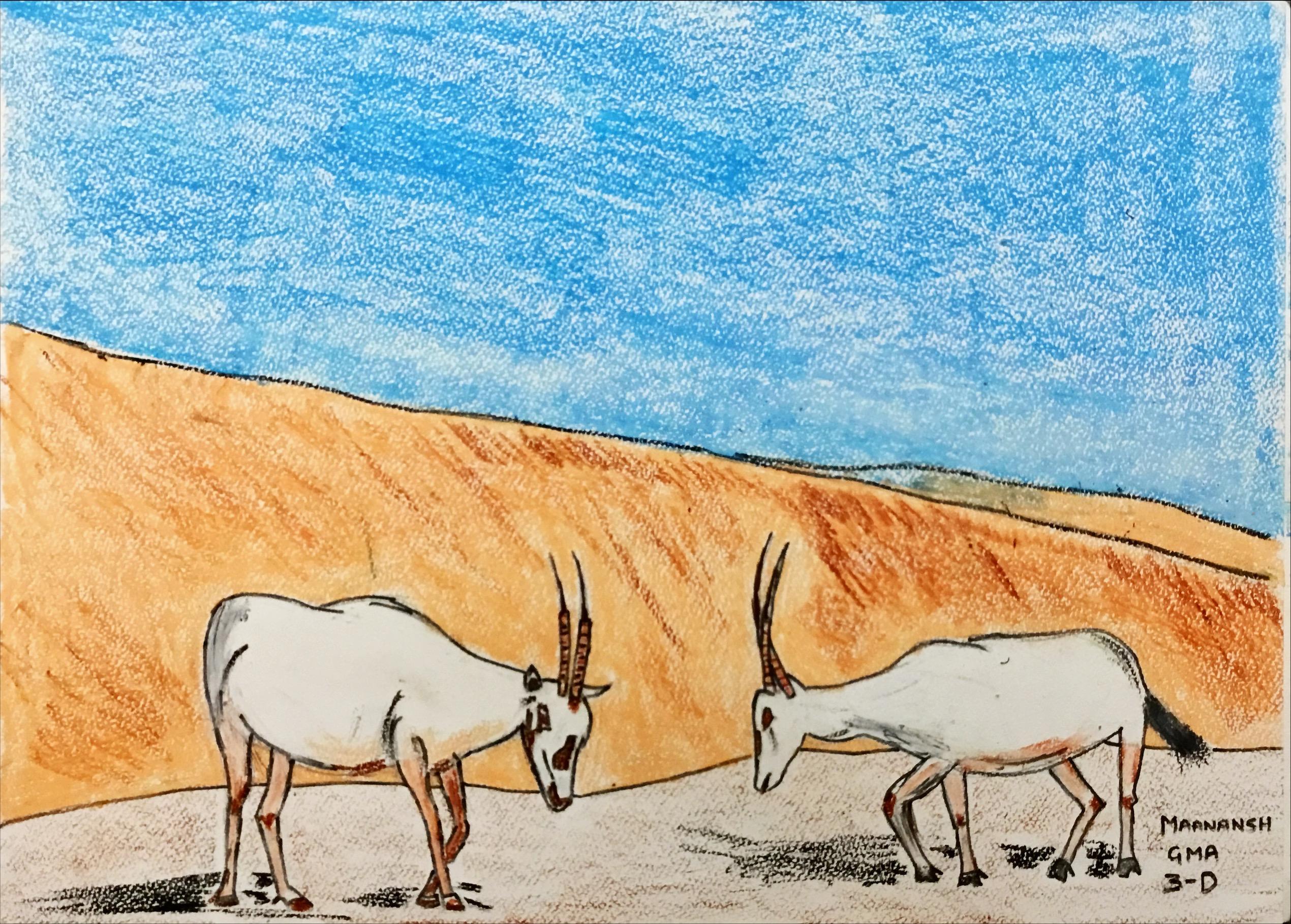 "Arabian Oryx ""symbol of cultural heritage"" by Maanansh Shah"