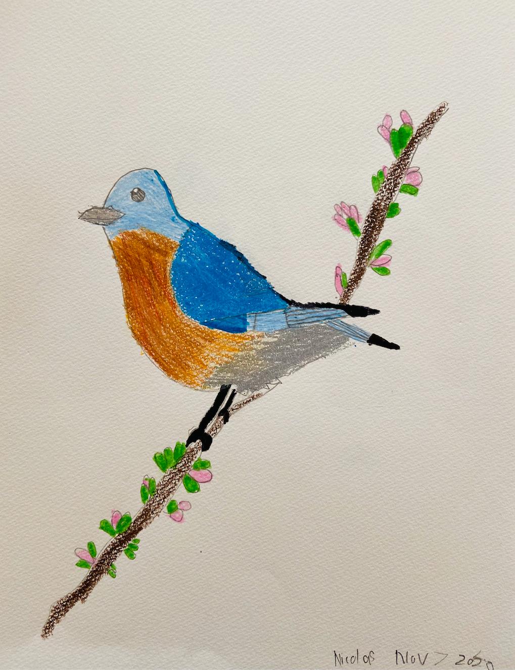 Bird in Nature by Nicolas Vidaurre