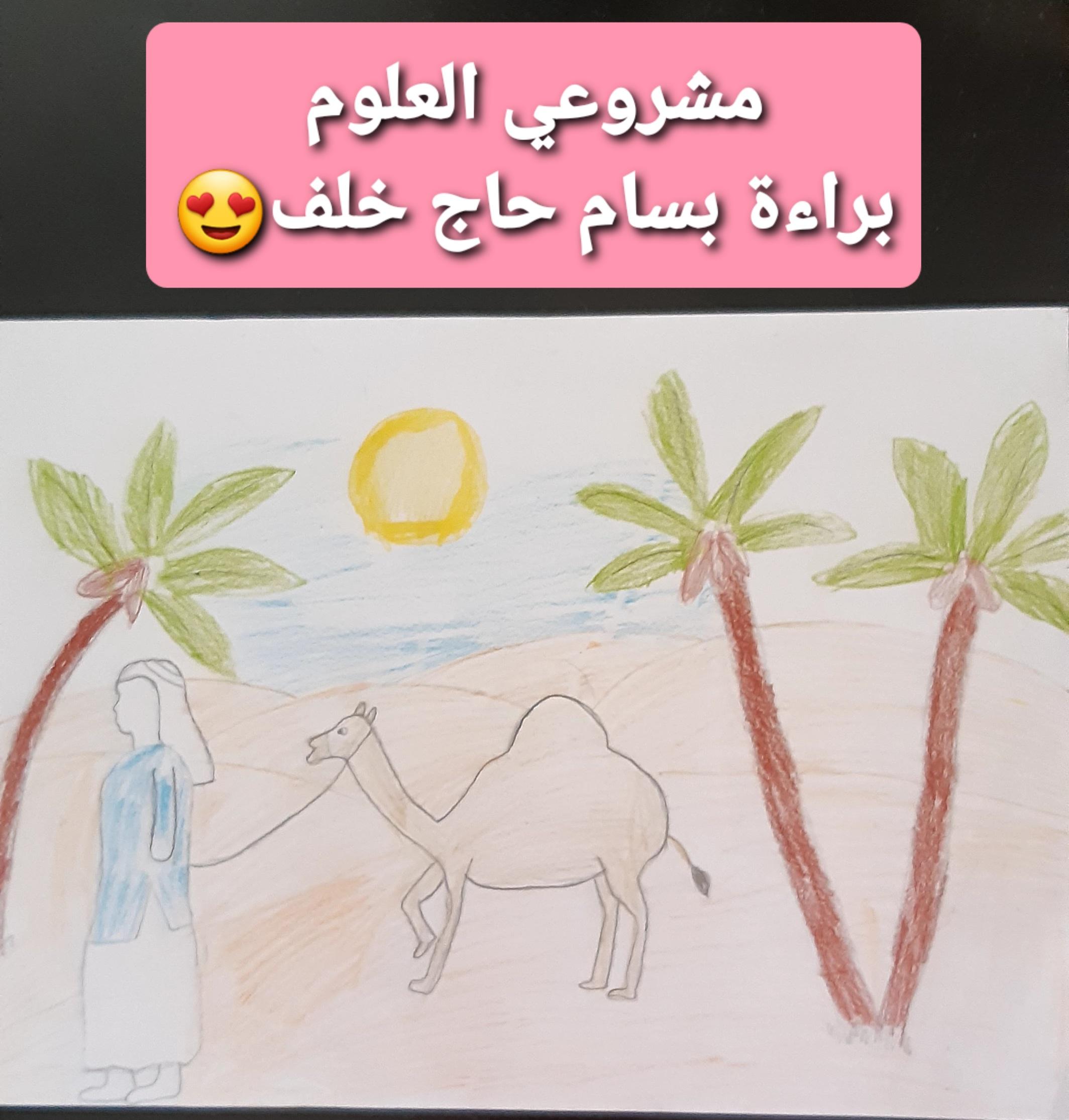 by Baraa Bsam Haag Khalf