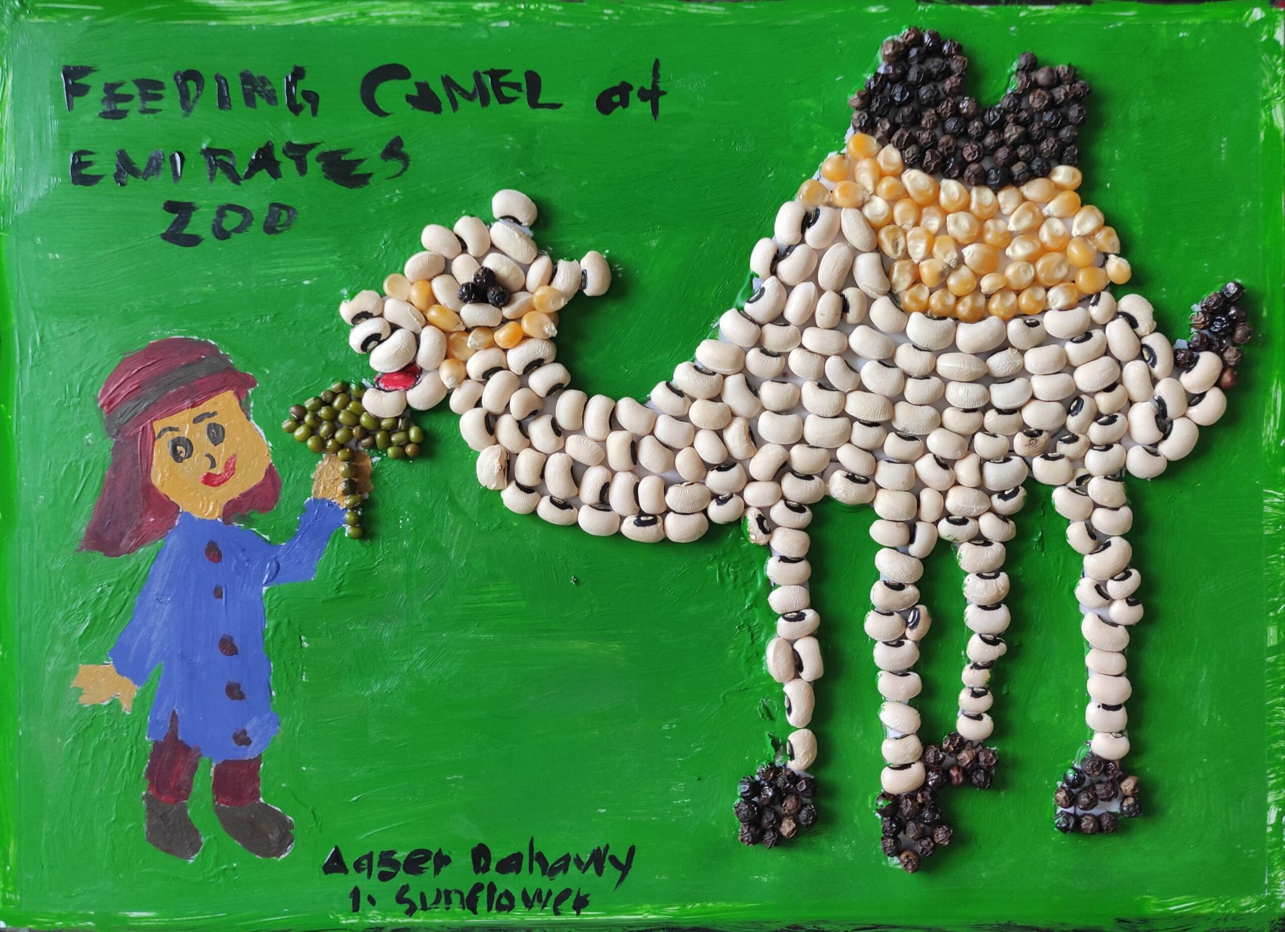 Feeding Camel at Emirates Zoo by Aaser Dahawy