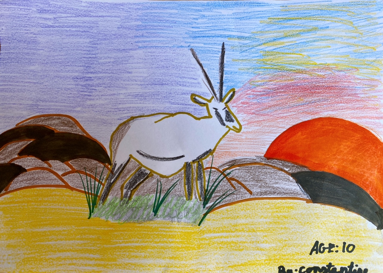 Oryx in Desert by Constantine Theo