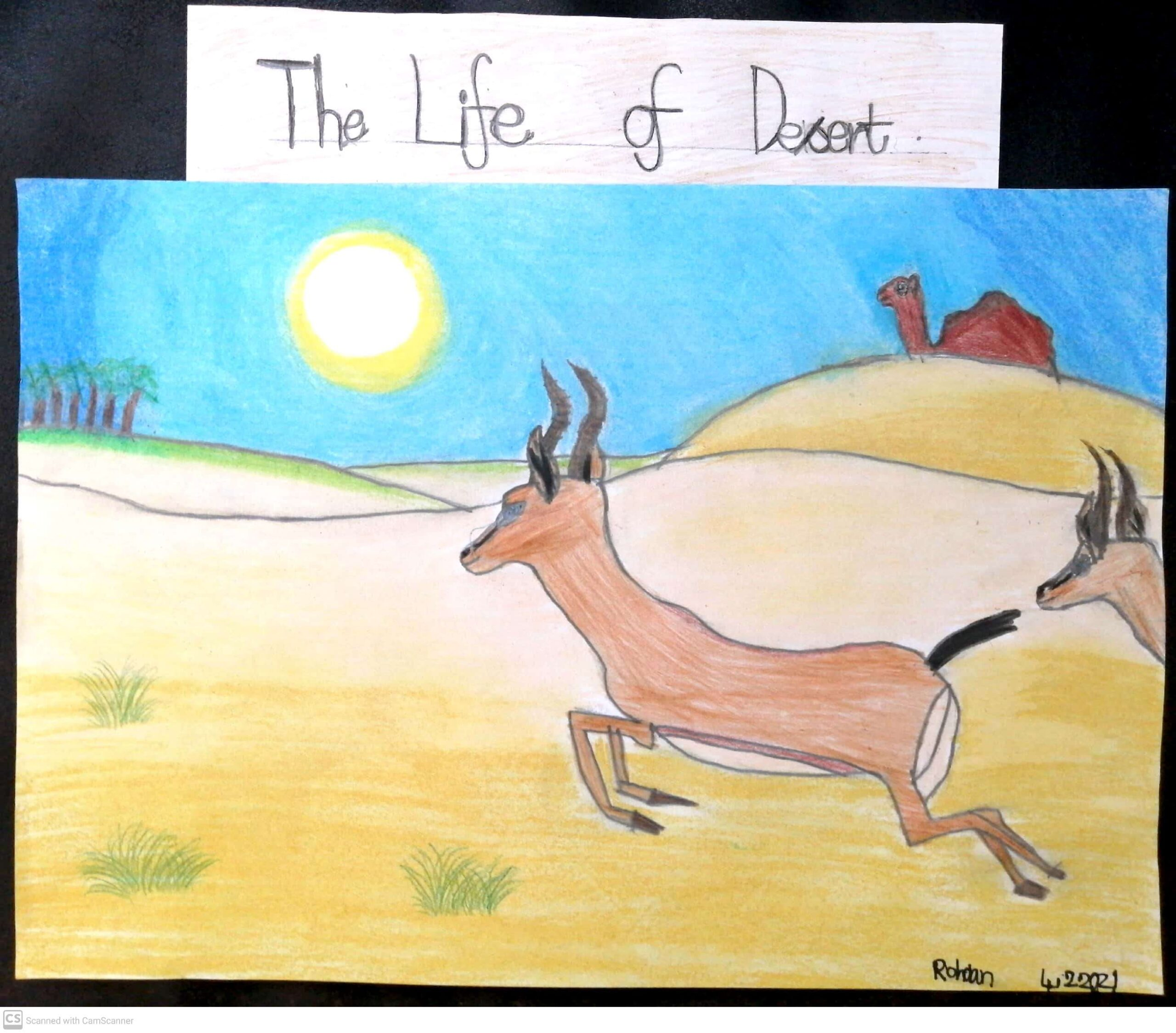 The Life of Desert by Rohaan Augustine Zacharias