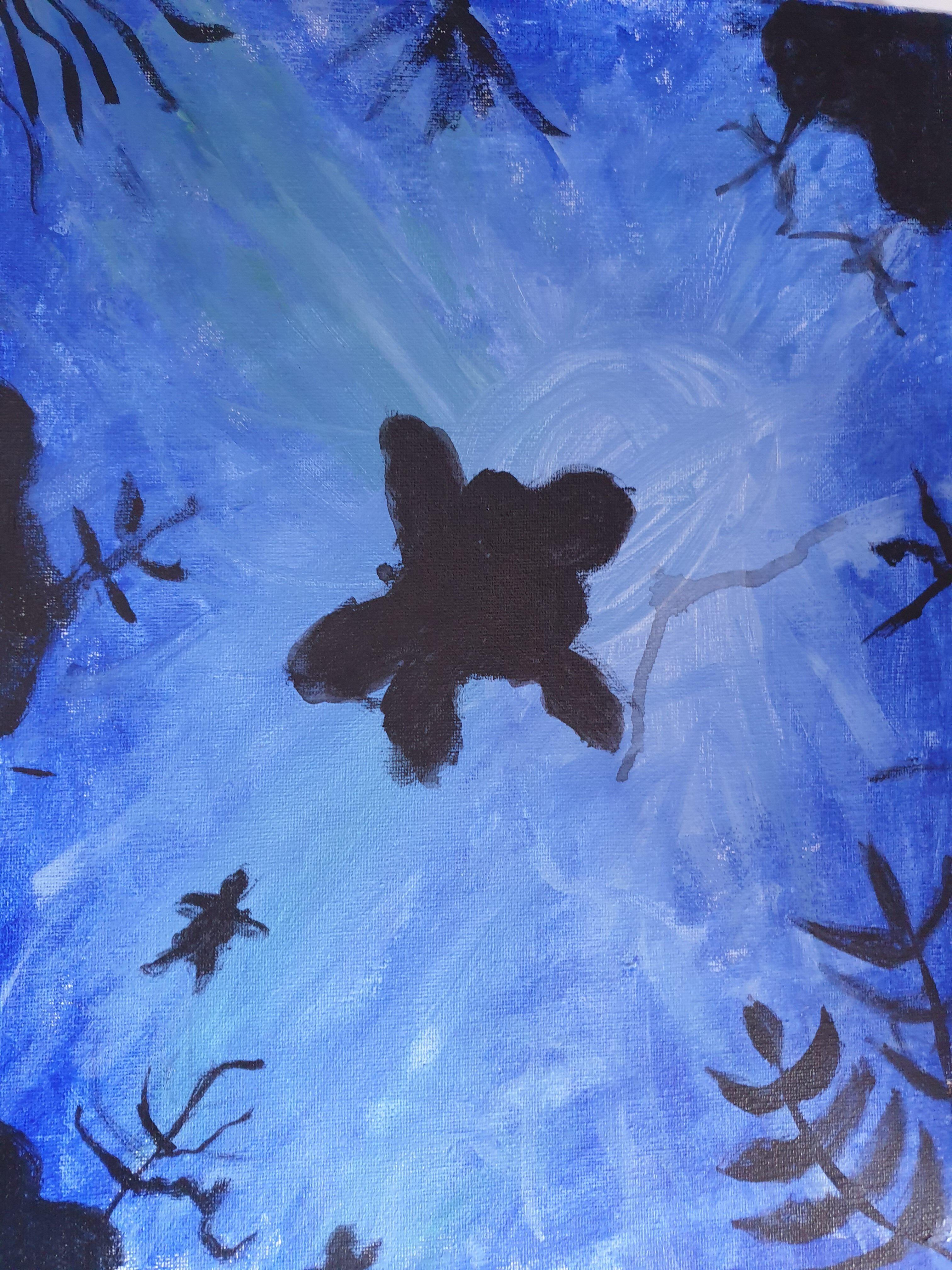 Mangroves of UAE by Sanolie Silva