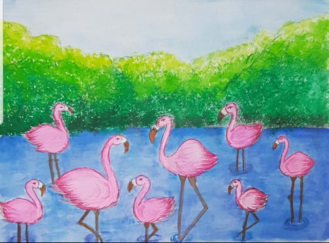 Ras Al Khor Wildlife by Kavya Rastogi