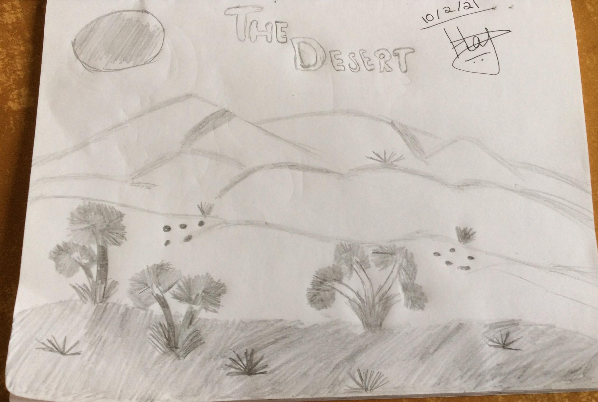 The Desert by Hajeera