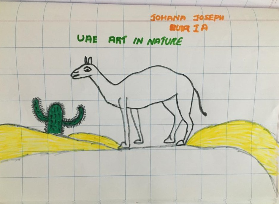 by Johana